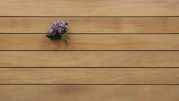 Holzterrasse Garapa, glatt, 25 x 145 bis 6100 mm Dielen, Premium (KD) Holz Bretter für die Terrasse