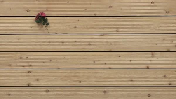 Holzterrasse Sibirische Lärche, fein gerillt, AB Sortierung, 26 x 143 bis 6000 mm Dielen, Holz Bretter für die Terrasse