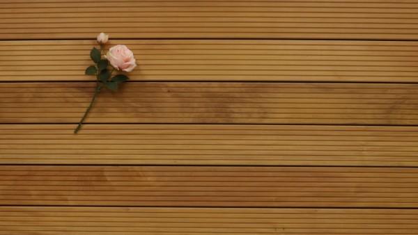 Holzterrasse Garapa, grob genutet, 25 x 145 bis 6100 mm Dielen, Premium (KD) Holz Bretter für die Terrasse